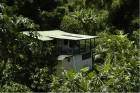 DominicaIcon