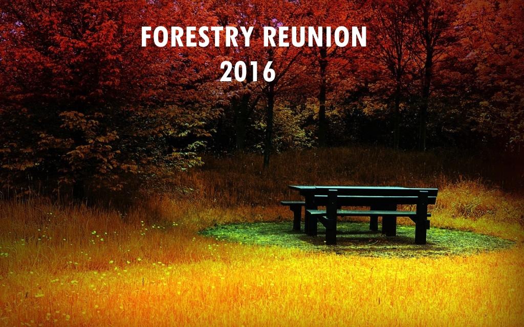 Rekindle your old relationships in September