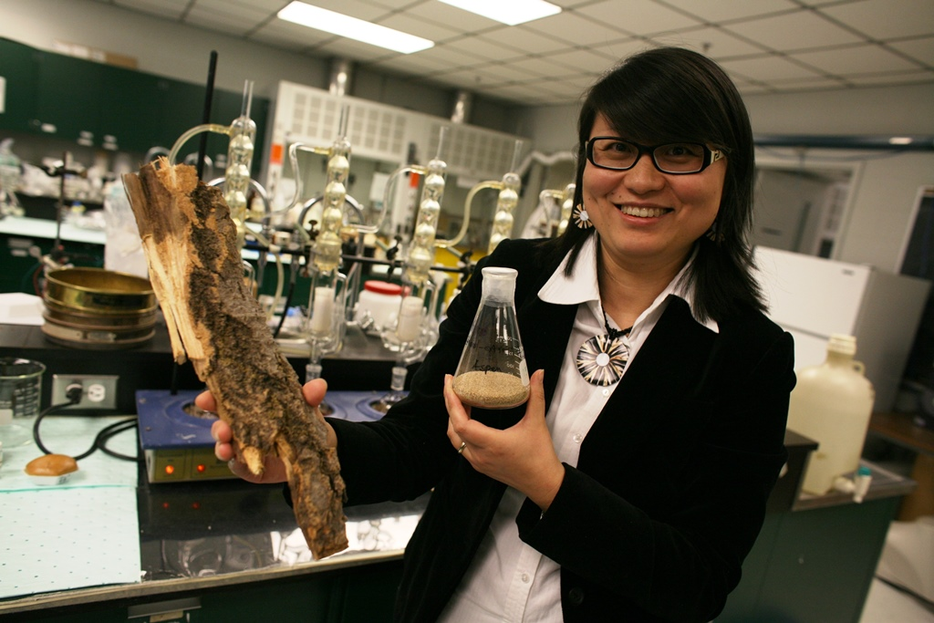 Turning tree waste into green glue – Dr. Ning Yan