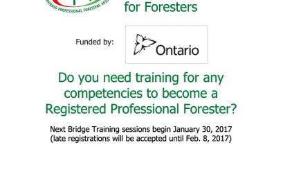Ontario Bridge Training Program for Foresters