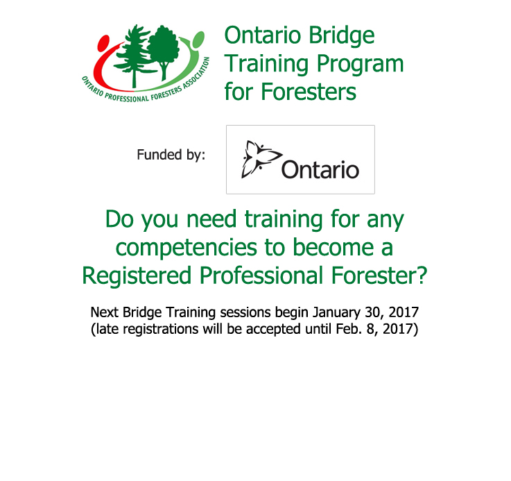 Ontario Bridge Training Program for Foresters