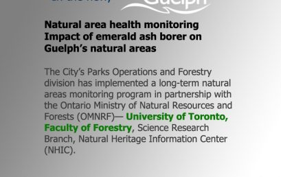 Impact of emerald ash borer on Guelph's natural areas