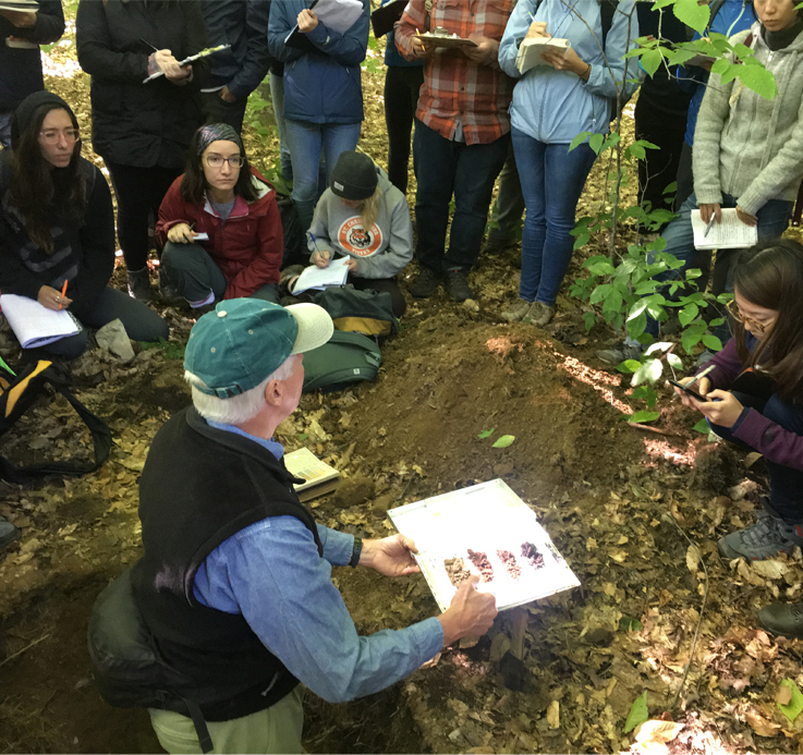 Forest science and forestry education find a new home in John H. Daniels Faculty of Architecture, Landscape, and Design