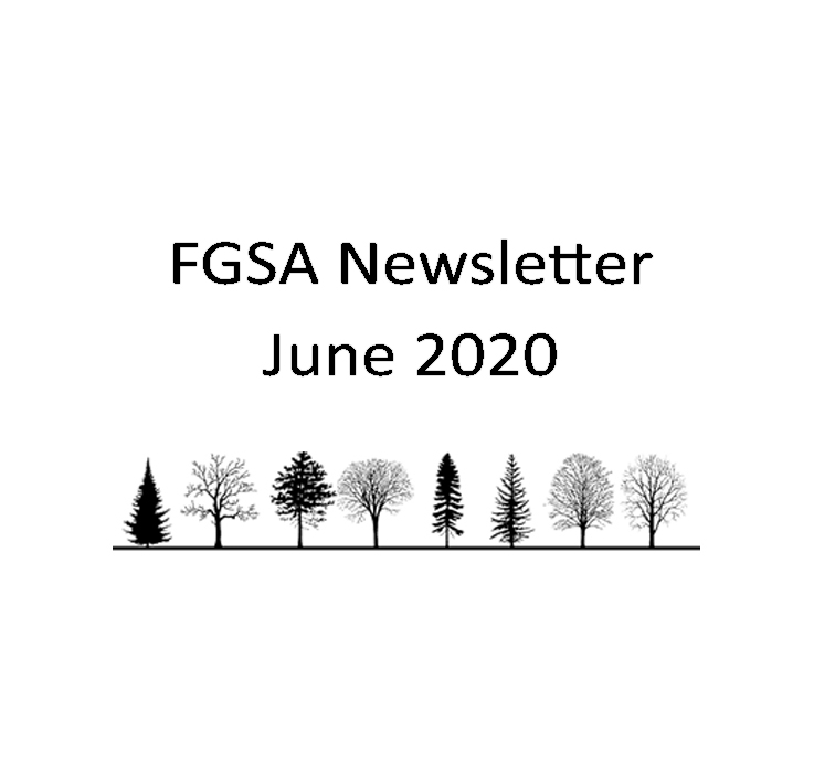 FGSA Newsletter June 2020