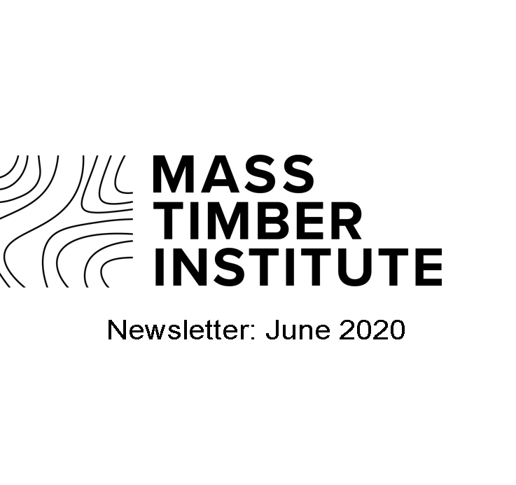 MTI Newsletter: June 2020