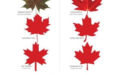 The Globe and Mail: The Norway maple is a bully, and shouldn't be confused with the sugar maple tree