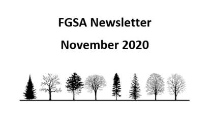 FGSA Newsletter November 2020