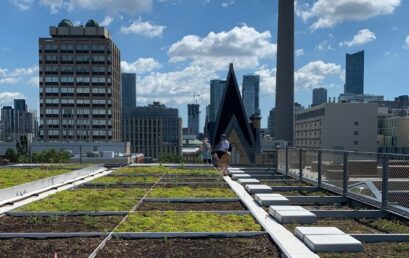 GRIT Lab launches a new NSERC CREATE interdisciplinary training and research program on living green infrastructure