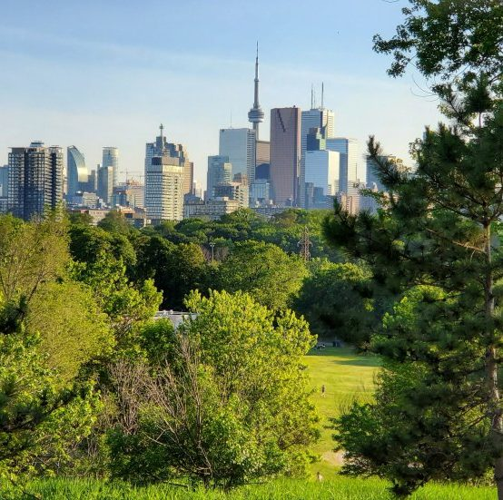 """Danijela Puric-Mladenovic acts as Urban Forest Lead in first-of-its-kind study: """"Natural Climate Solutions for Canada"""""""