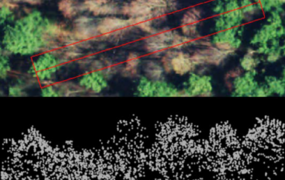 How the Ontario Woodlot Association is Using LiDAR to Help Woodlot Owners Make Decisions by Ben Gwilliam, MFC Student